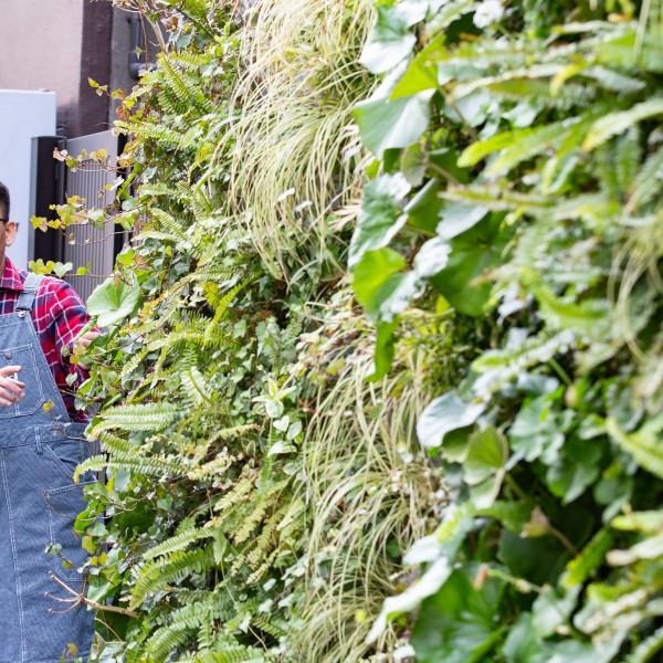 記事執筆:関内GREEN DAY! ワークショップ&トーク――関内地区の「緑」にまつわる話(前編)